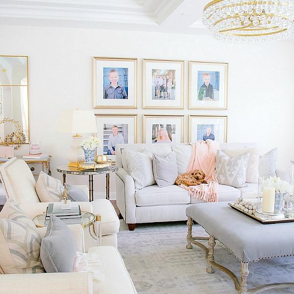 Meet Chloe plus Puppy Furniture + Essentials you will Love